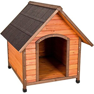 big dog houses