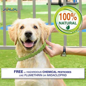 100% natural collar safe for dogs hazardous chemical pesticide free