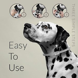 Are flea collars easy to use left over collar length trim cut off comfortable for dog
