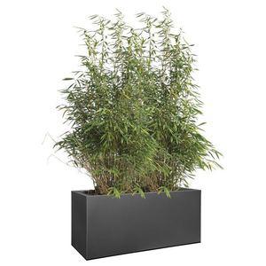 Elho Vivo Matt Finish Lang Zwart kunststof plantenbak