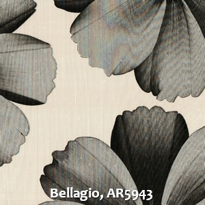 Bellagio, AR5943