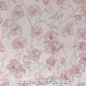 Lily Story, NPP 224004