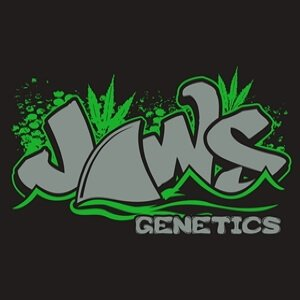 JAWS_GENETICS_LOGO_LUSCIOUS_GENETICS