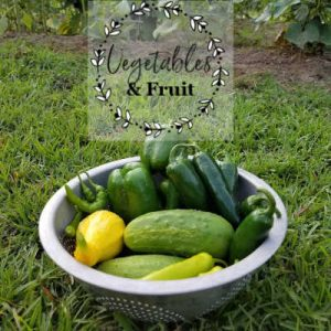 Bowl of Vegetables, cucumber, yellow squash, green bell peppers, banana peppers, jalapenos, Southern Gardening Gal