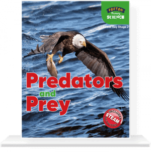 Lower-KS2-Predators-and-Prey