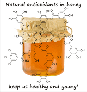 Antioxidants Local Raw Honey from Seven Gables Farm va