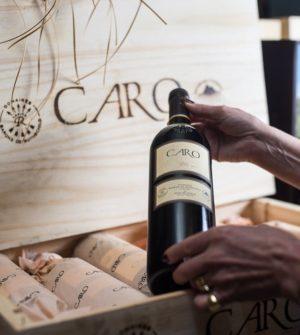 Vino Caro Catena Rothschild Blend Cabernet Sauvignon Malbec Paraje Altamira Valle de Uco Caja