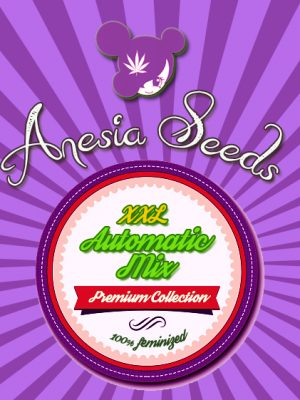 XXL Automatic Mix (Anesia Seeds), 15 automatic Seeds