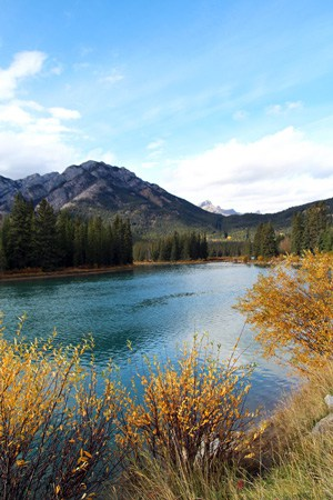 Banff in the Fall