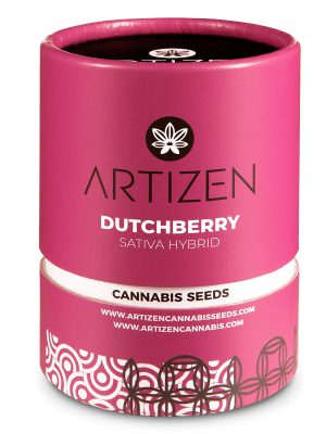 Dutchberry von Artizen