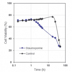 Cell Viability of BL2 cells after staurosporine treatment