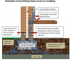 Rising Damp Explained