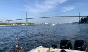 Vancouver salmon fishing report September 2020