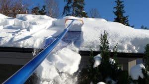Avalanche Roof Rake