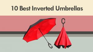 10 Best Inverted Umbrellas