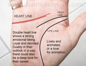 double heart line meaning, heart line,