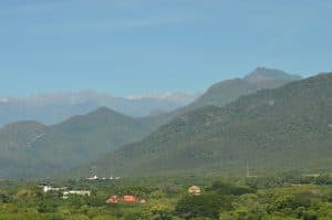 Valledupar Fendaux Snow from the jungle