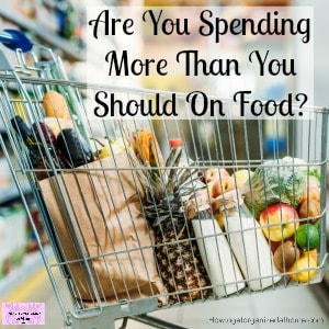 Spending money on groceries is important but how much is too much?