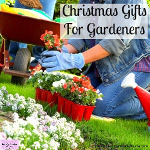 Looking for gift ideas for a gardener in your life?