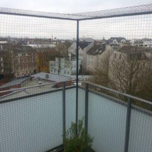 Katzennetz Balkon mit Glasverkleidung