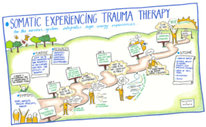 Roadmap of somatic experiencing trauma therapy