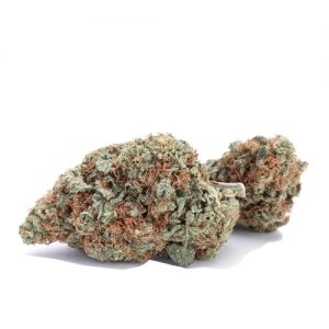 Moby Dick Weed