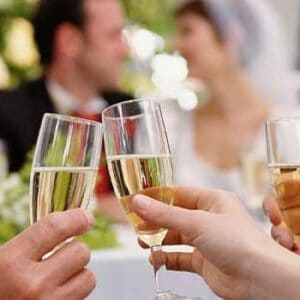 wedding toast, oregon wedding dj, wedding dj services