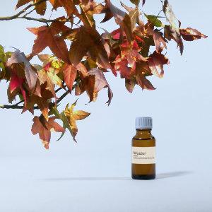 Amber Parfumöl