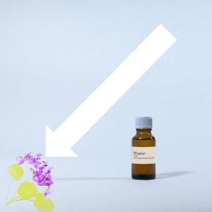 Veilchen Parfumöl 20ml