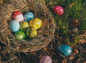 farbanje jaja vaskrs