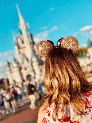 The Disney World plan step by step