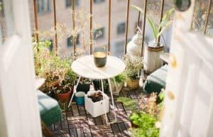 Five Gardening Tips For Apartment Balconies
