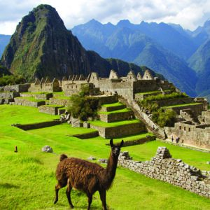 machu picchu tours available