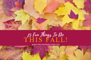 Cooler weather, beautiful colors and pumpkin EVERYTHING, make fall a special time of year. Check out these 25 Fun Things To Do This Fall!