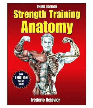 entrenamiento de fuerza-anatomía