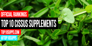 pinakamahusay na-Cissus-quadrangularis-supplements-on-the-market