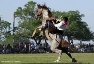a gaucho rides a ucking horse at the fiesta de la tradicion festival in San Antonio de Areco. Book a tour to an estancia (ranch) on Wander Argentina