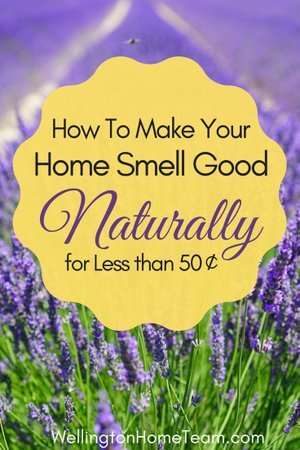 How to Make your Home Smell Good Naturally without Toxic Chemicals