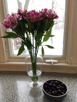 Tu B'Shevat Flowers