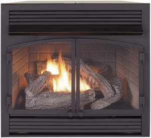 2- Duluth Forge Dual Fuel Ventless Fireplace Insert