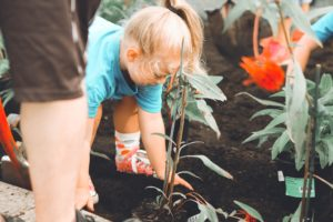 Responsible kids are taught like this young girl working in the garden with her mother.