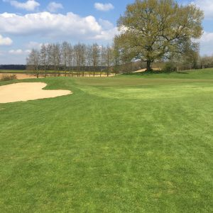 Golf de Rebetz, Green du 01