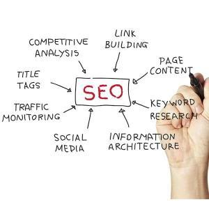Succeed.net Monthly SEO Services