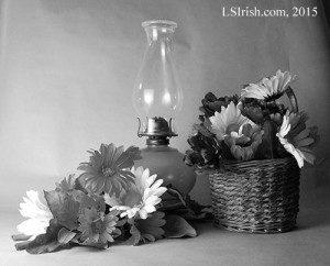 gray scale photographs for wood burning projects
