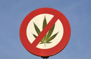 Cannabis prohibition marijuana news online