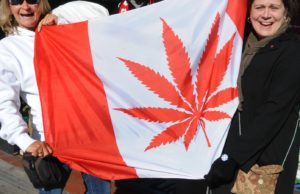 Montreal and Others Spot Advantages in Lifting Pot Prohibition