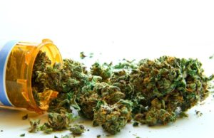 Top 5 Medical Benefits of the Marijuana in Today's Society