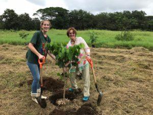 Voluntariado en Costa Rica con animales silvestres