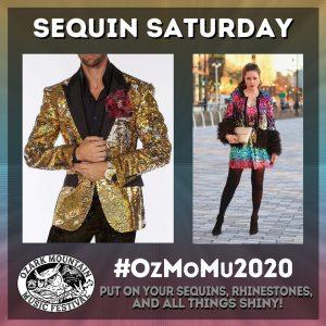 ozark mountain music festival experience