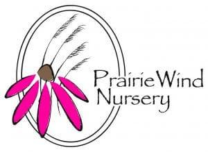 prairie_wind_pink[1]